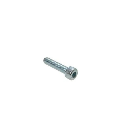 10 Tornillos rosca M10x30 mm